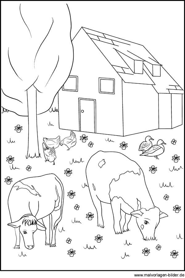 ponys zum ausmalen