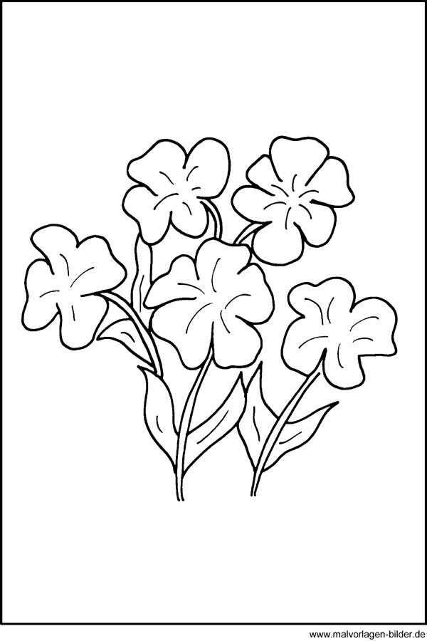 Kostenlose Malvorlagen Blumen Fensterbild