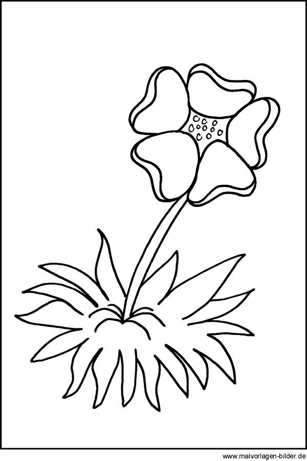 Kostenlose Malvorlagen Und Window Color Bilder Von Blumen