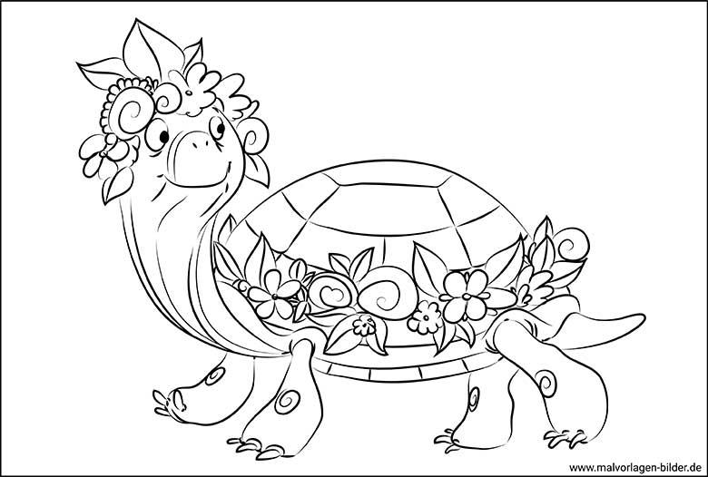 schildkröte vorlagen zum ausmalen  malvorlagen