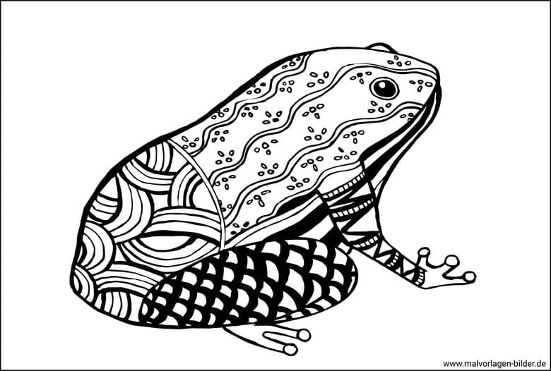 Zen Art Frosch Ausmalbild Für Erwachsene