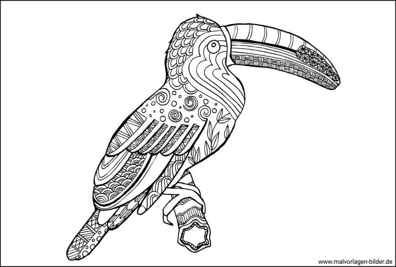 Zen Art Vogel Ausmalbilder Fur Erwachsene