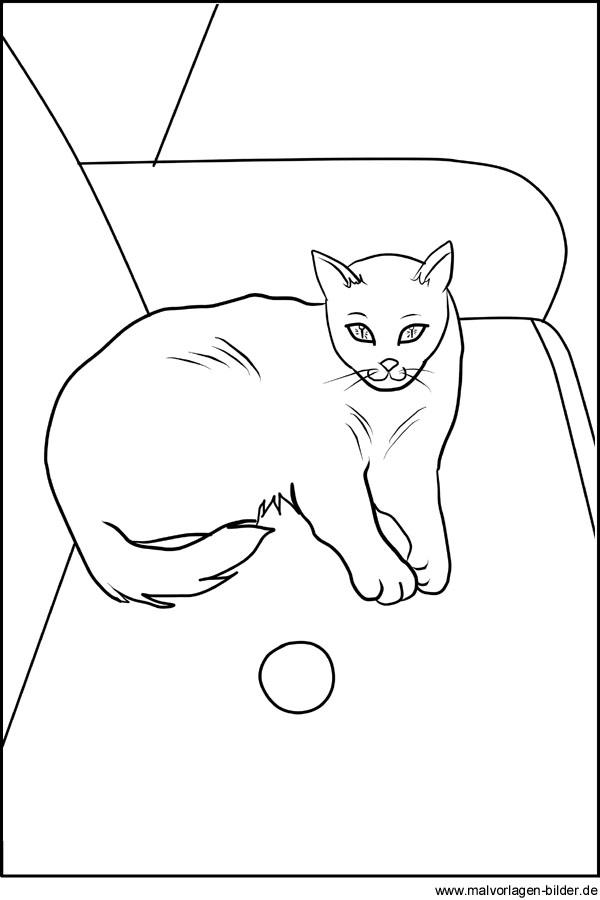 Kostenlose Ausmalbilder Von Einer Katze Zum Ausdrucken