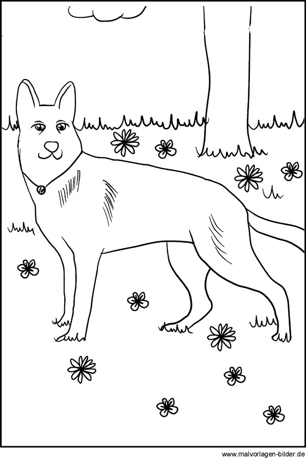 Ausmalbilder von Hunden - Kostenlose Hund Vorlage zum Ausdrucken