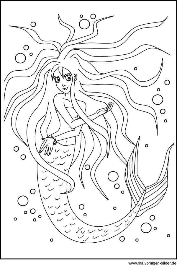 kostenlose malbildvorlage von einer meerjungfrau  nixe