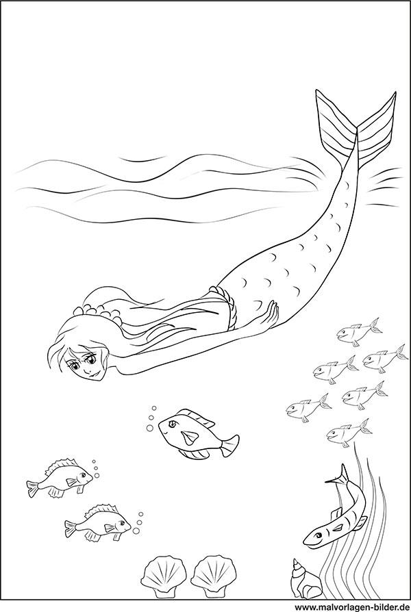 malvorlage  meerjungfrau und fische im meer