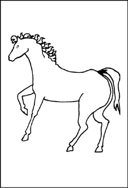 Pferde Malvorlagen Und Ausmalbilder Für Kinder