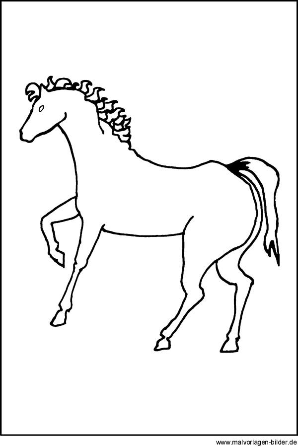 kostenlose Malvorlage von einem Pferd und Window Color Bilder von ...