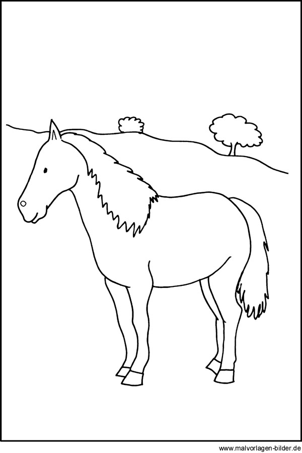 Pferde-Bild zum Ausdrucken und Ausmalen