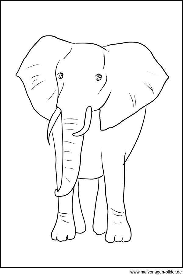 Elefant - Ausmalbild zum Ausdrucken