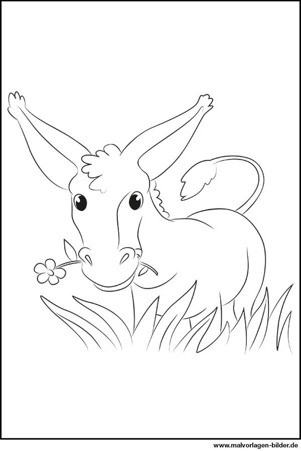 Ausmalbild Esel Zum Ausdrucken Und Ausmalen