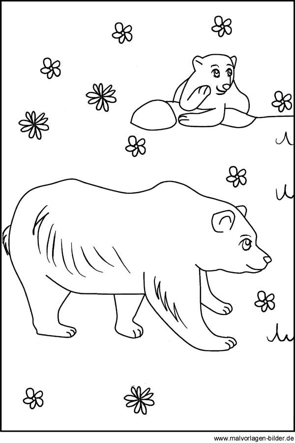Zootiere als Malvorlage - Bären im Zoo