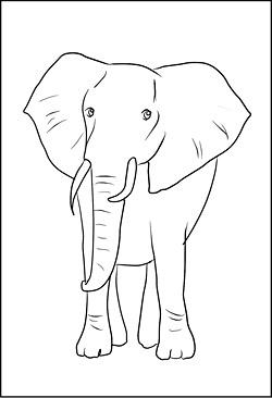 Malvorlagen Und Ausmalbilder Von Tieren Zum Ausdrucken
