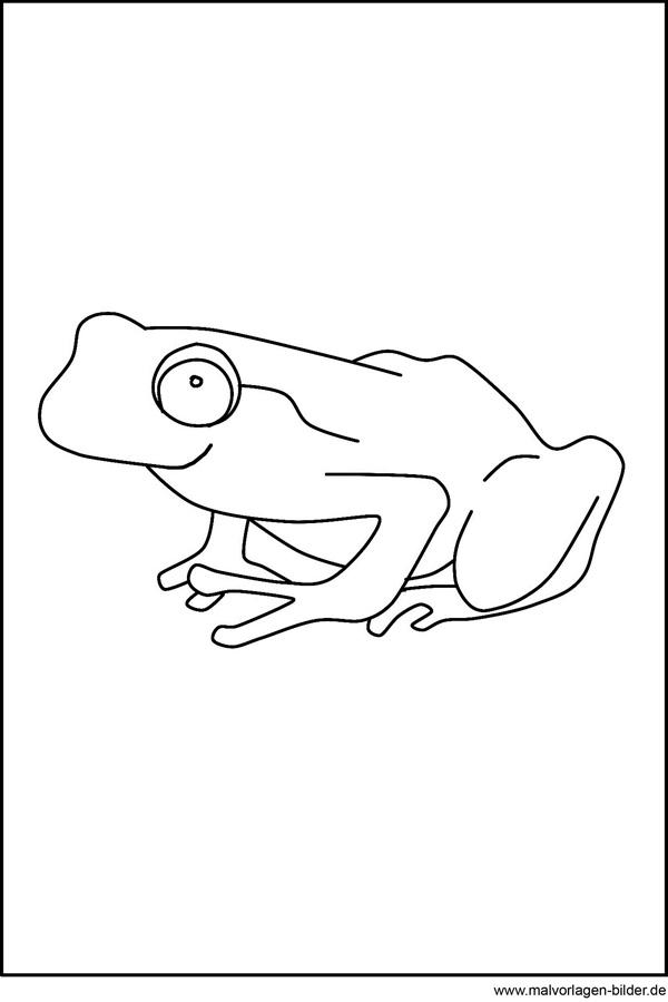 Frosch als Malvorlagen zum Ausdrucken und Ausmalen
