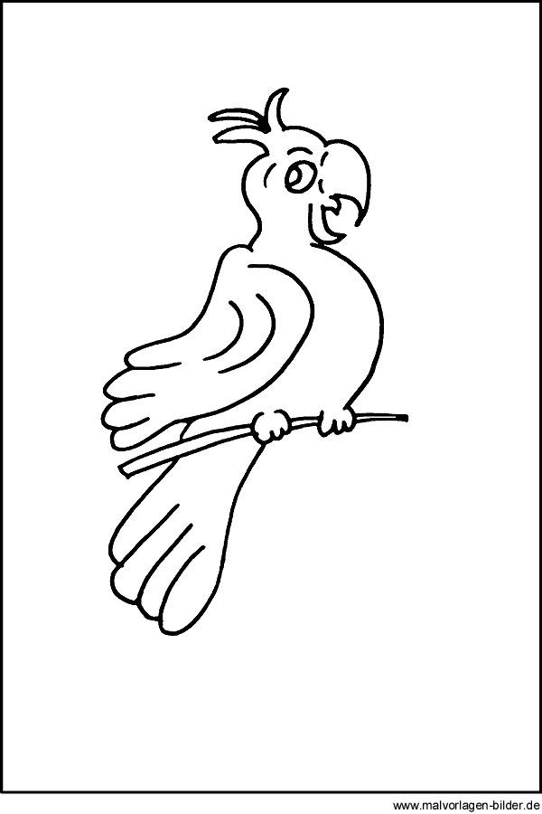 Malvorlage Papagei - kostenloses Ausmalbilder zum Ausdrucken