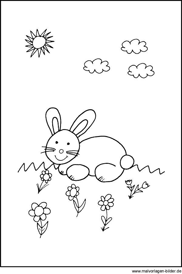 Malvorlage mit einem Hasen für Kinder
