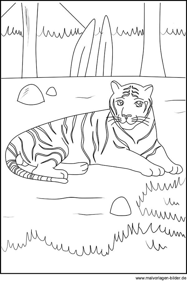 Tiger Kostenlose Ausmalbilder Und Malvorlagen Fur Kinder