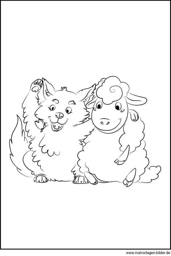 Schaf Und Wolf Kostenloses Ausmalbild Zum Download