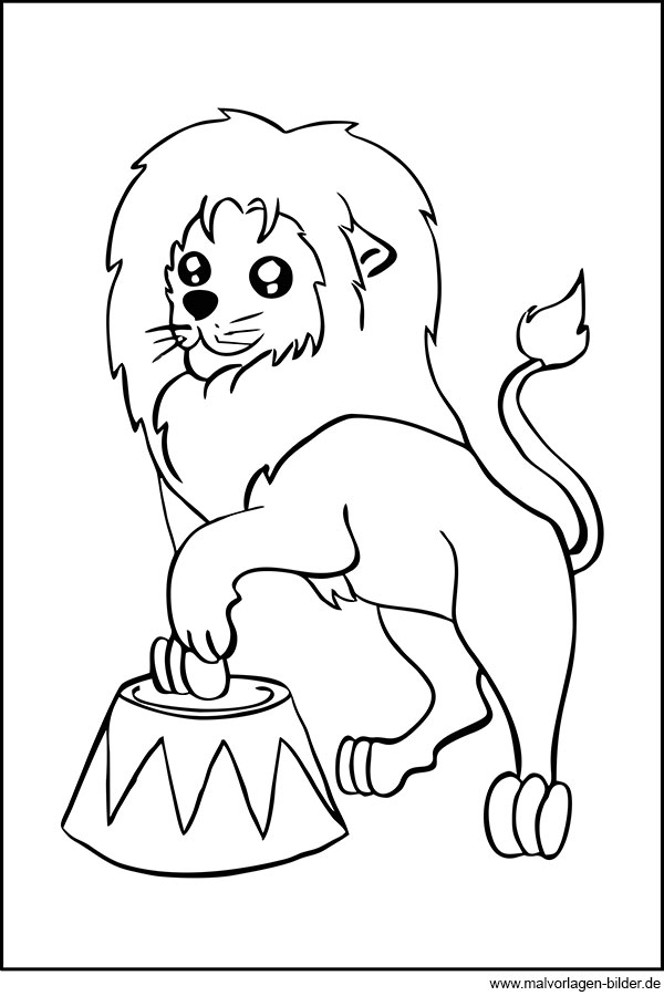löwe im zirkus  ausmalbilder zum gratis download